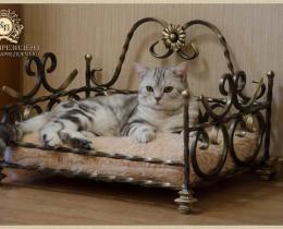 Кованая мебель для питомцев №12